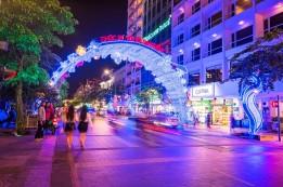 Lung Linh Chào Xuân Đinh Dậu 2017 Cùng Sài Gòn