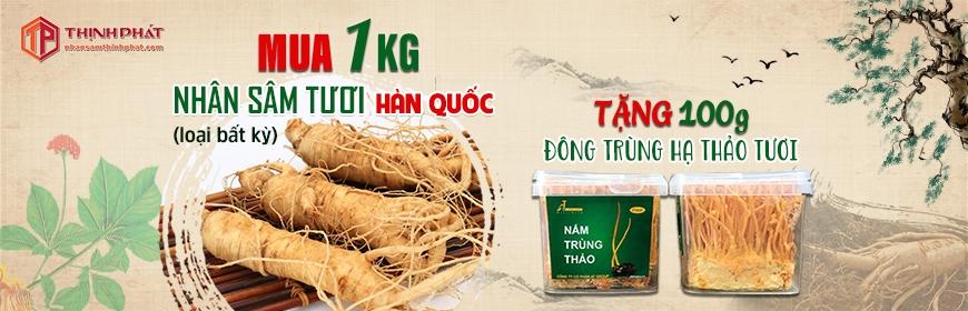 Mua 1 kg nhân sâm tươi Hàn Quốc 6 năm tuổi, tặng 500g đông trùng hạ thảo tươi