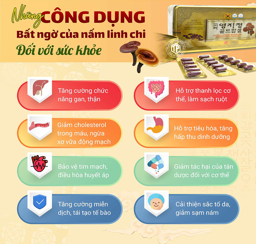 Những Công Dụng Bất Ngờ Của Viên Linh Chi Hàn Quốc Đối Với Sức Khỏe