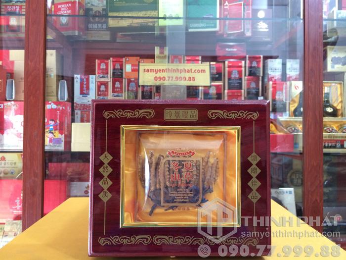 Đông trùng hạ thảo Tây Tạng thiên nhiên nguyên con 10g - Con trung