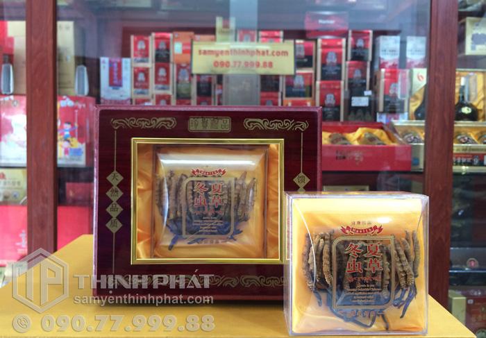 Đông trùng hạ thảo Tây Tạng thiên nhiên nguyên con 20g