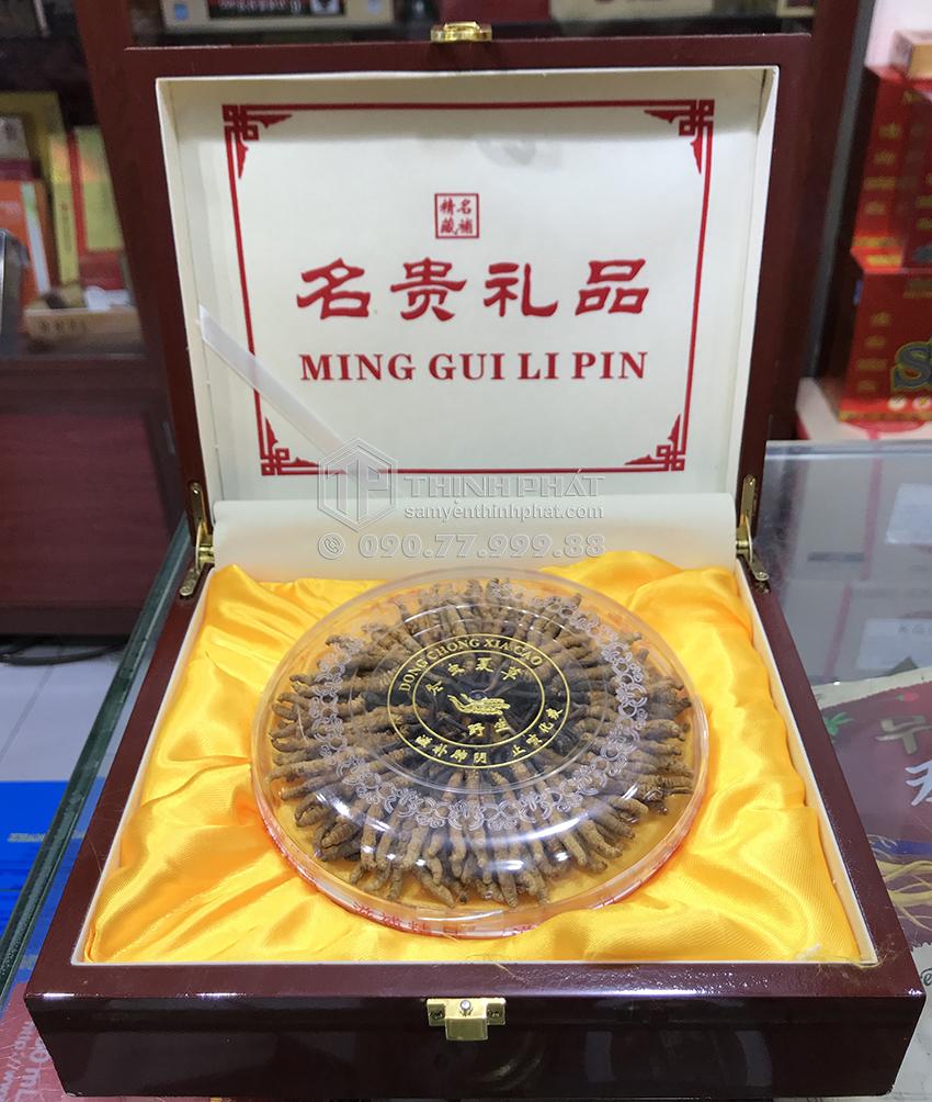 Đông trùng hạ thảo Tây Tạng thiên nhiên nguyên con hộp 50g