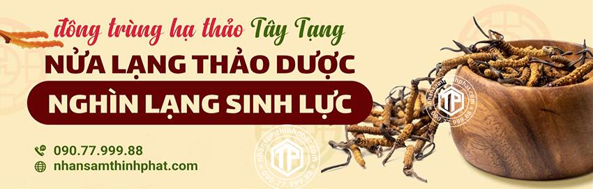 Đông trùng hạ thảo Tây Tạng - Nửa lạng thảo dược, nghìn lạng sinh lực