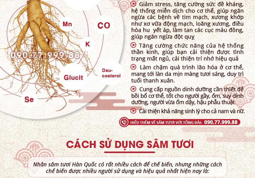 Giới thiệu công dụng, cách sử dụng sâm tươi Hàn Quốc