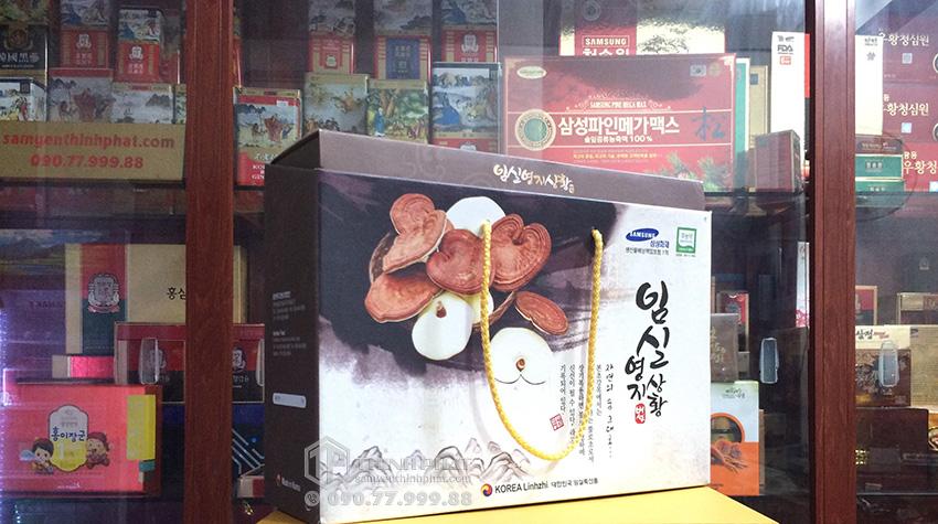 Nấm linh chi Hàn Quốc cao cấp hộp quà tặng 1kg