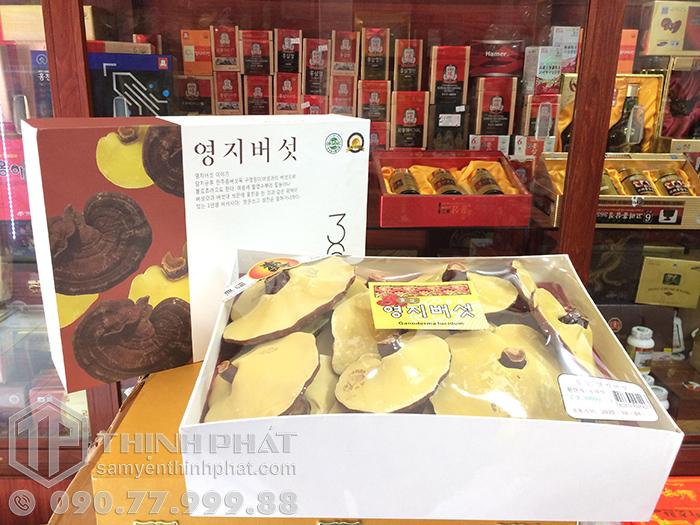 Nấm linh chi vàng Hàn Quốc hộp quà tặng