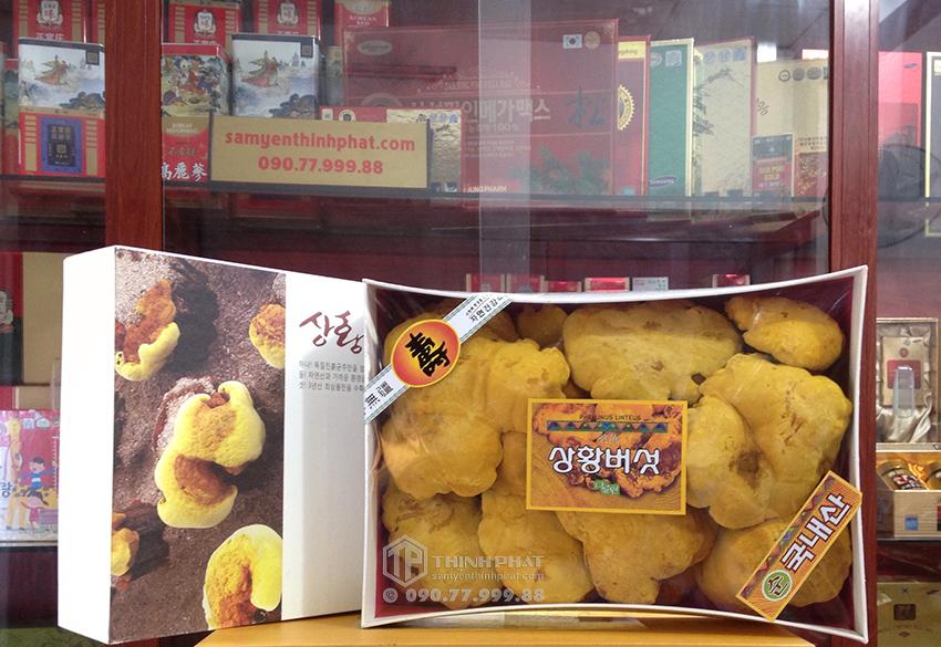 Nấm Thượng Hoàng Hàn Quốc 365 hộp quà tặng 0,5kg