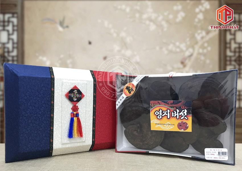 Nấm hắc linh chi Hàn Quốc Hộp quà tặng sang trọng