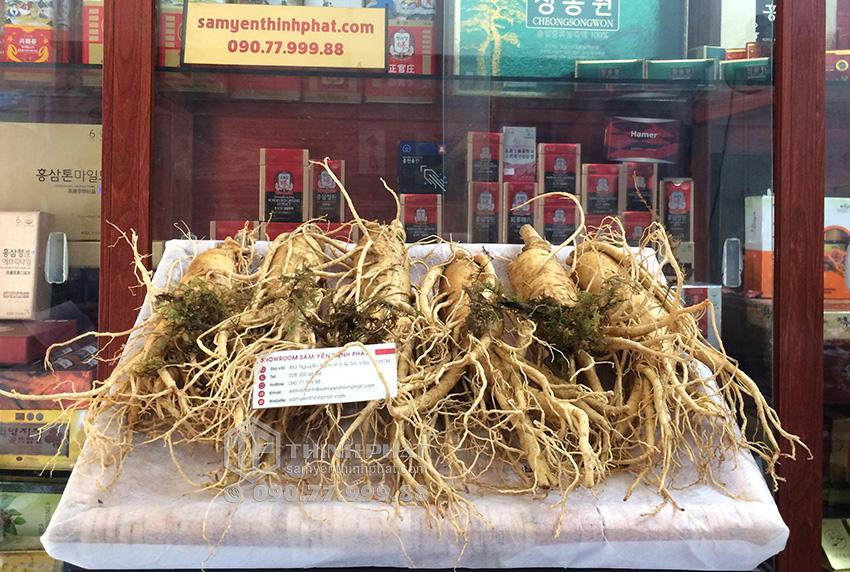 Nhân sâm tươi Hàn Quốc loại 6 củ 1 kg