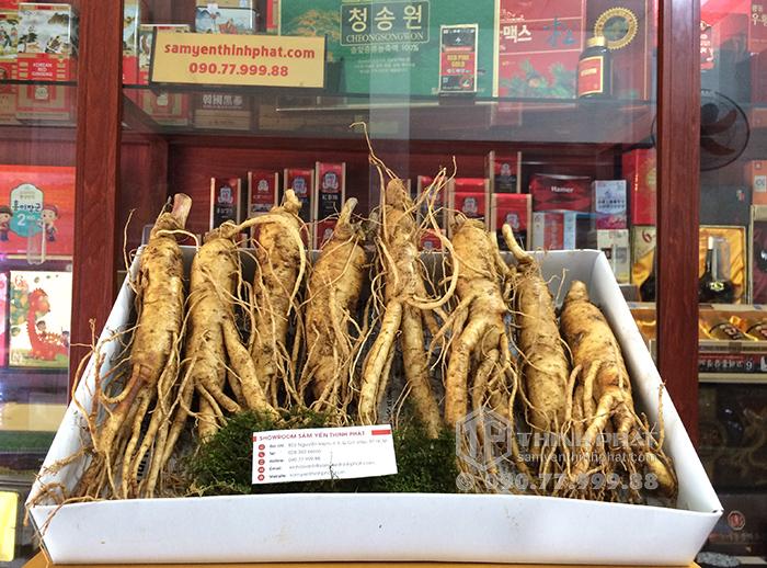 Nhân sâm tươi Hàn Quốc loại 8 củ 1 kg